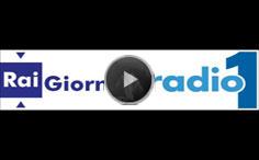 logo_Rai_giornale_radio1_audio