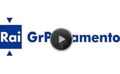 logo_Rai_Giornale_radio_Parlamento