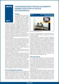 Immagine Contaminazione fungina in ambienti indoor: rischi per la salute occupazionale