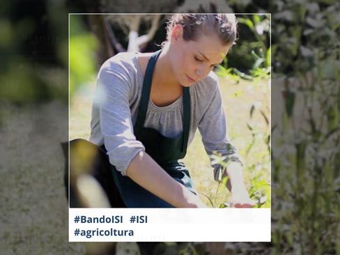 Bando Isi 2018, dall'Inail 35 milioni di euro per le micro e piccole imprese agricole