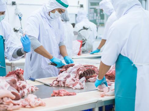 Impianti di macellazione e sezionamento, pubblicato il rapporto sulla gestione dei focolai da Covid-19
