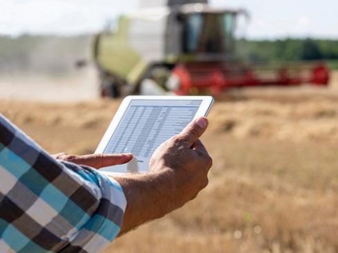 Bando Isi Agricoltura elenchi cronologici