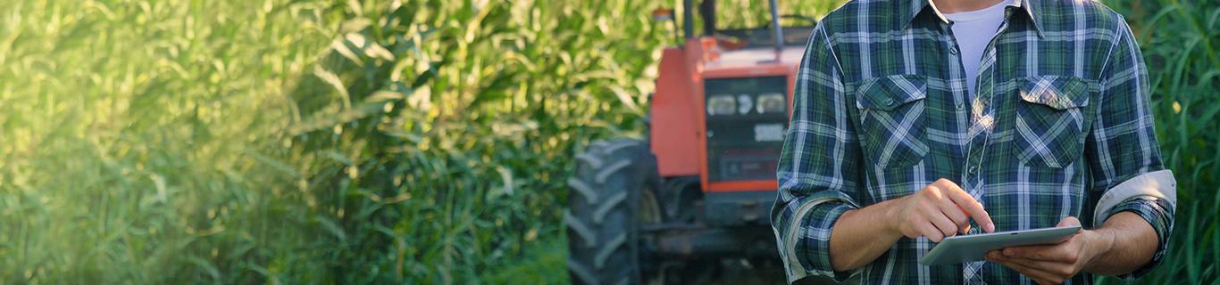 Bando Isi Agricoltura 2019/2020