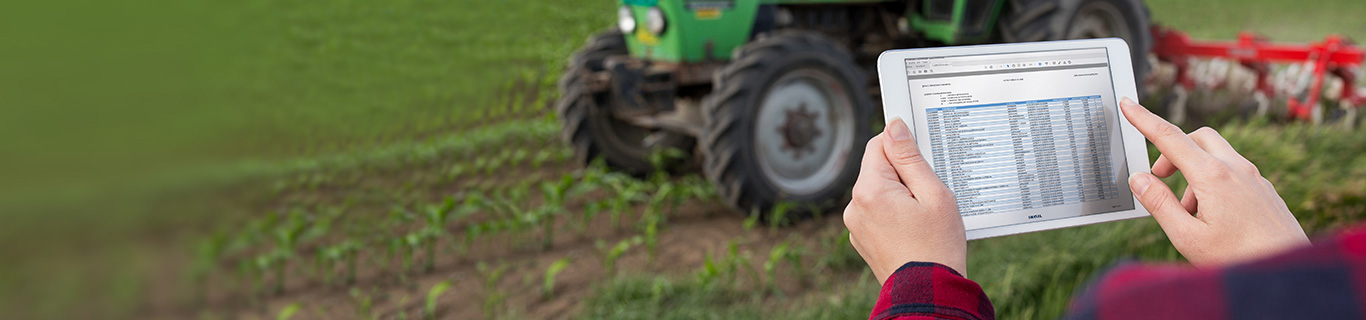 Bando Isi Agricoltura 2019-2020 - elenchi provvisori
